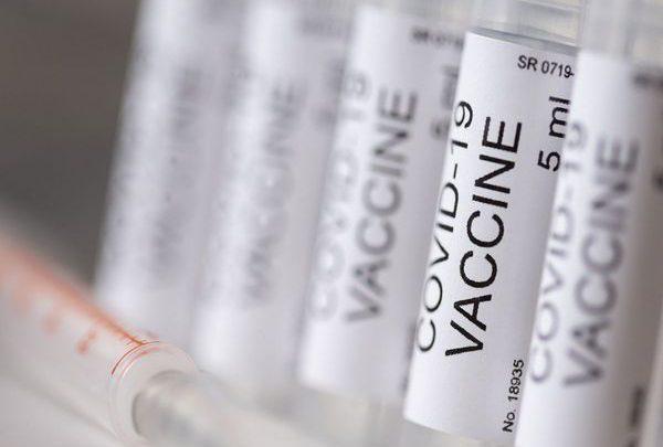 Vaccino sperimentale  protegge i macachi dalla polmonite