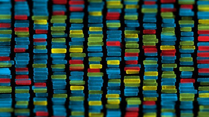 La Cina sta costruendo un data base genetico di tutti i maschi