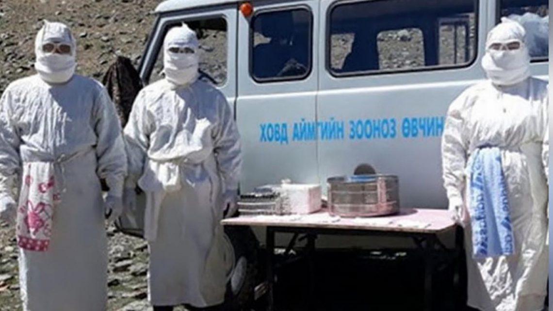 Due casi di peste in Mongolia